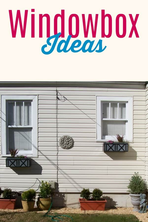Ideas for what to plant in your window boxes.