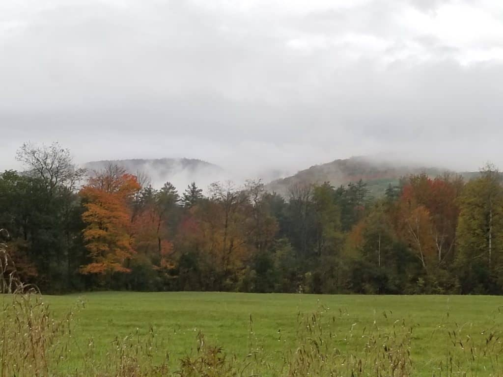 White Mountains, New Hampshire, Fall Leaves, Misty morning