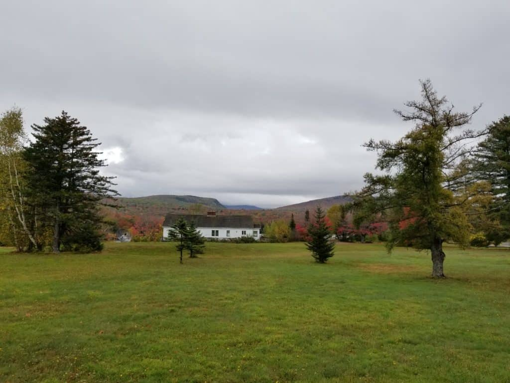 White Mountain, New Hampshire, Fall Leaves, Misty morning
