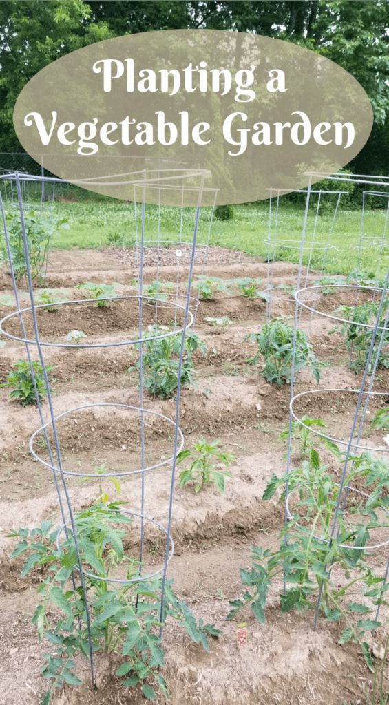Planting a Vegetable Garden, Growing your own vegetables,