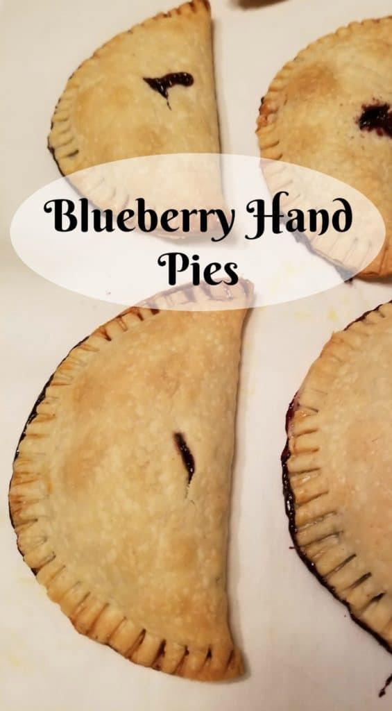 Blueberry Hand Pie, Using your Garden Produce, Cooking with your own home grown produce