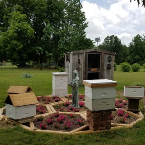 Build a Unique Bee Yard