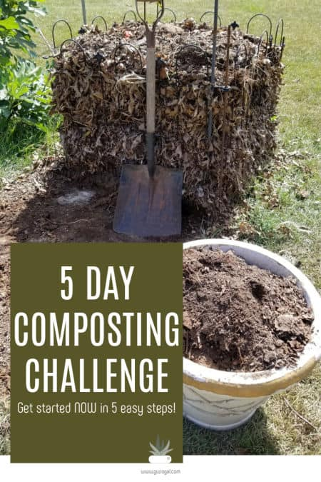 5 Day Composting Challenge