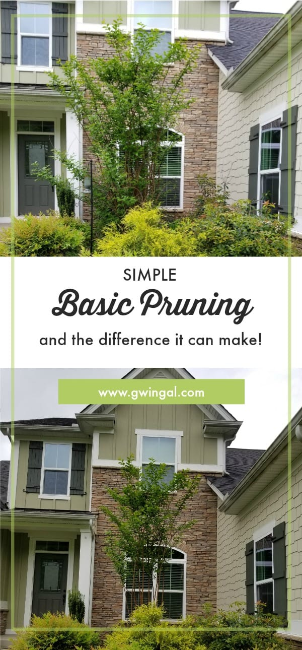 Green Landscaping in front of a brick house before pruning on top and after pruning on bottom