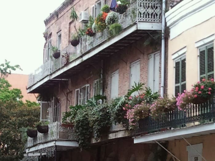 Window boxes hanging from balconies in New Orleans